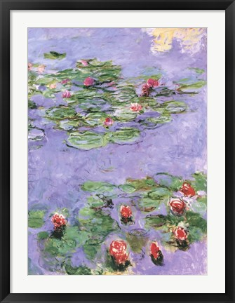 Framed Water Lilies, c. 1914-1917 Print