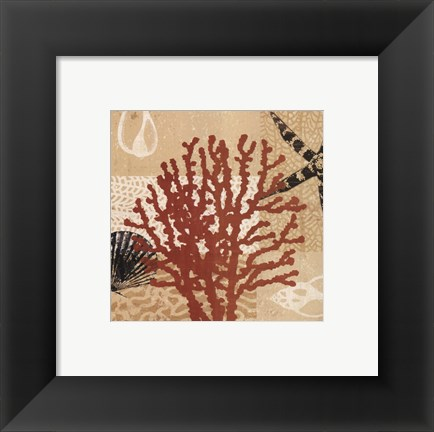 Framed Coral Impressions III Print