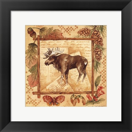 Framed Moose - square Print