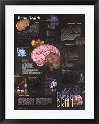 Framed Brain Health Print