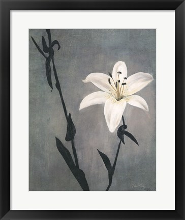 Framed Lily on Grey Print