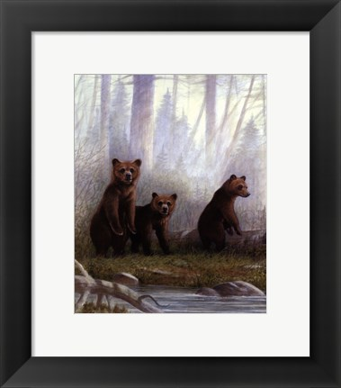 Framed Grizzly Cubs Print