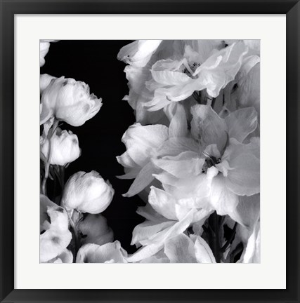 Framed Delphiniums I Print