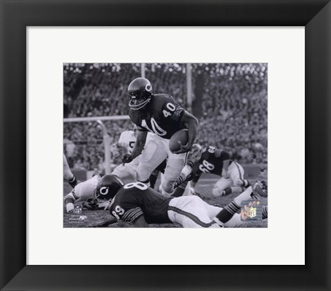 Framed Gale Sayers Print