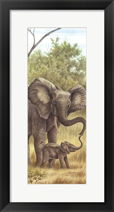 Framed Mama Elephant With Baby Print