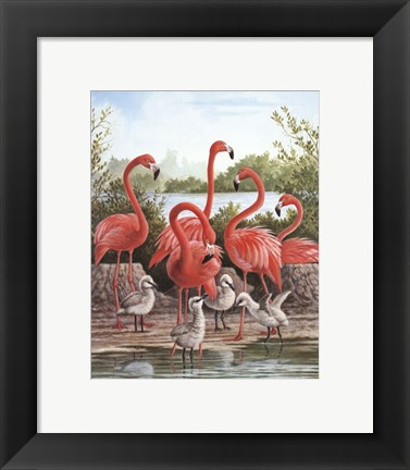 Framed Flamingo 1 Print