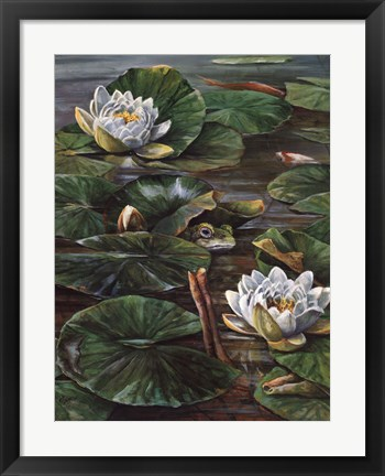 Framed Frog In Lily Pond Print