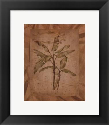 Framed Leaves - brown Print
