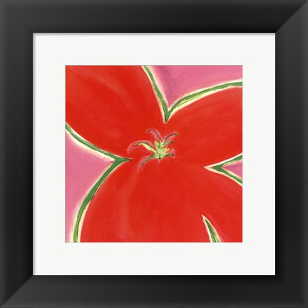 Framed Red Flower With Pink Background Print