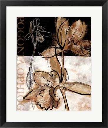 Framed Blooming Orchid II Print