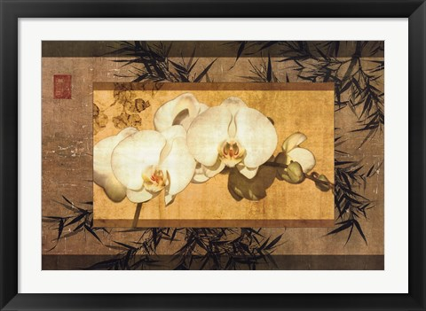 Framed Bamboo Orchids II Print