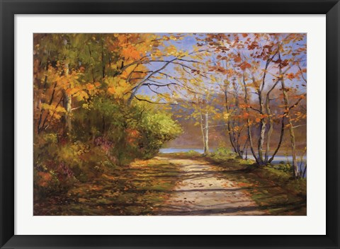 Framed Shadow Lake II Print