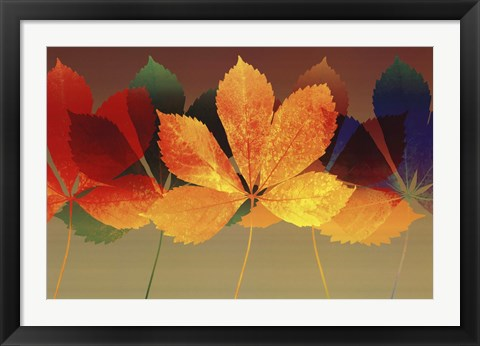 Framed Leaf Dance II Print