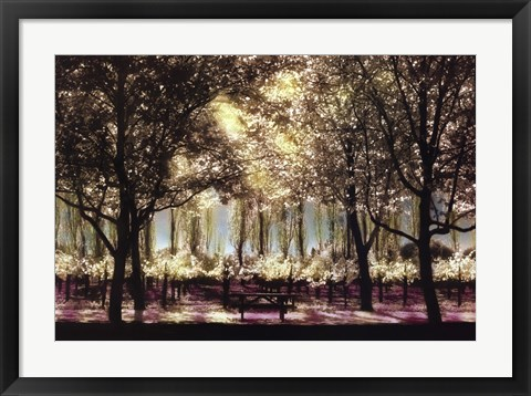 Framed Picnic In Sonoma Print