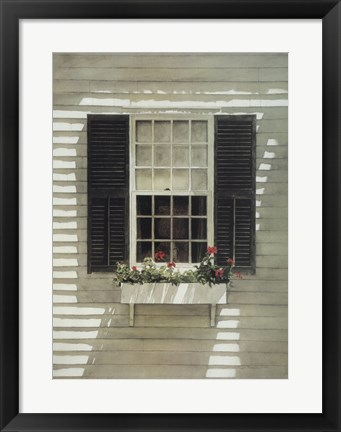 Framed Nantucket Window Box Print
