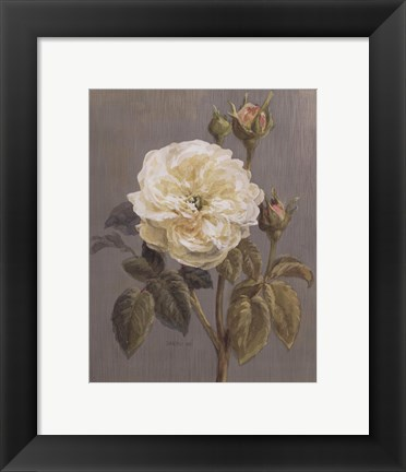 Framed Heirloom White Rose Print