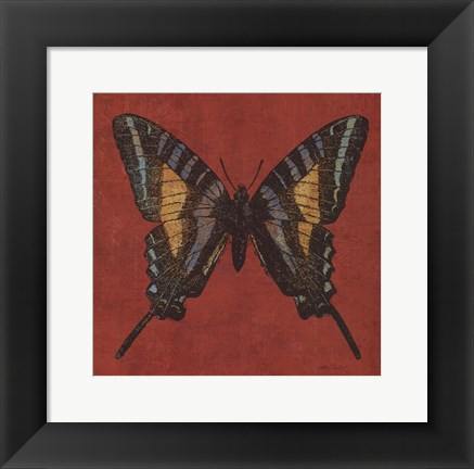 Framed Cranberry Butterfly Print