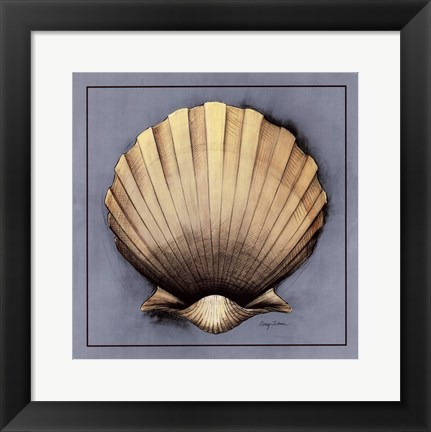Framed Coastal Shell II Print