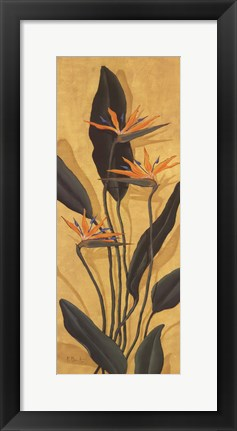 Framed Bird Of Paradise - Mini Print