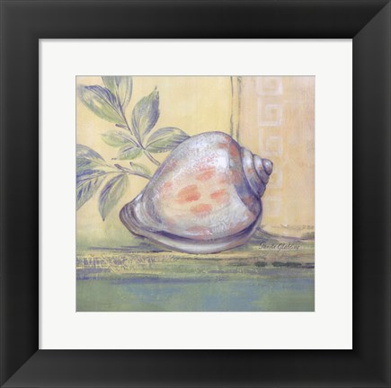 Framed Tranquil Seashells I - Mini Print