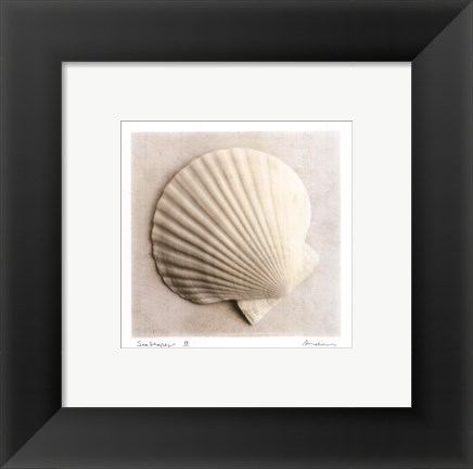 Framed Sea Shapes II - Special Print
