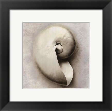 Framed Sea Shapes III Print