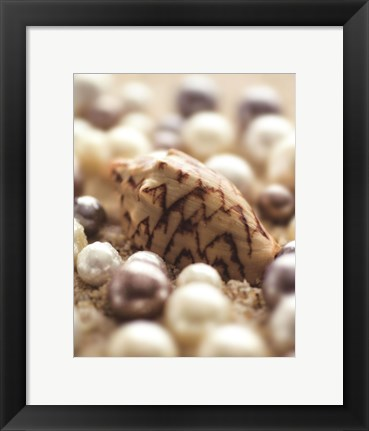 Framed Sea Jewels IV Print