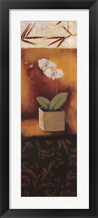 Framed Orchid Song Print