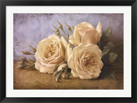 Framed Roses From Ivan Print