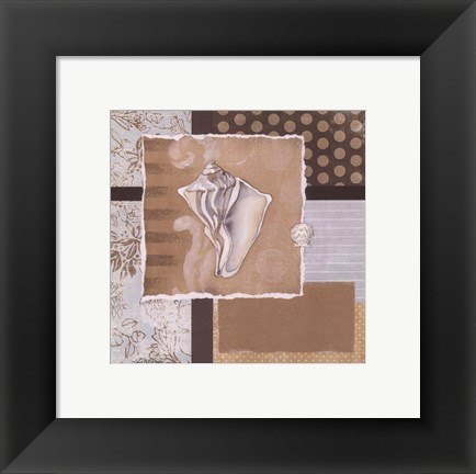 Framed Shell Collage III Print