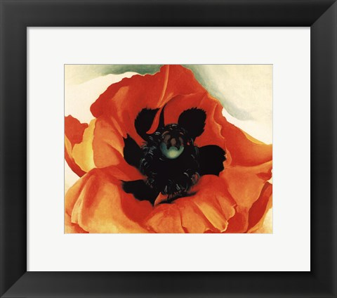 Framed Poppy, 1927 Print