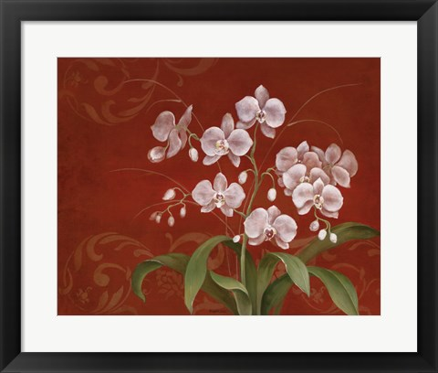 Framed Say it with Orchids II Print
