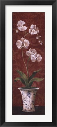 Framed Organic Orchids II Print