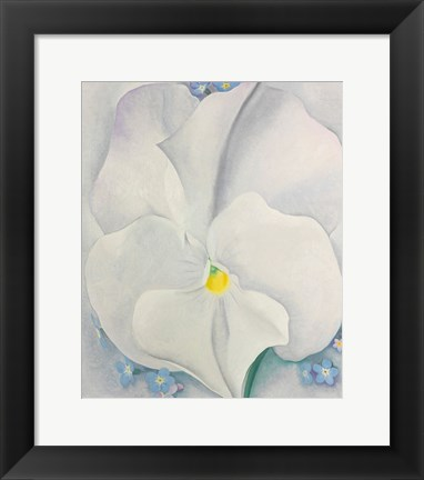 Framed White Pansy Print