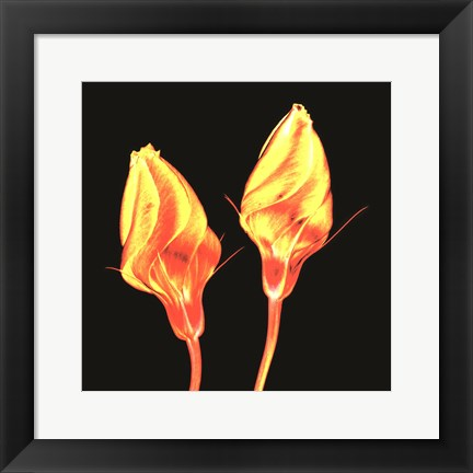 Framed Electric Flowers No. 2 Print