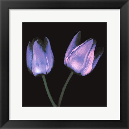 Framed Electric Flowers No.3 Print