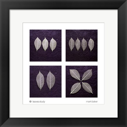 Framed Leaves Study Print