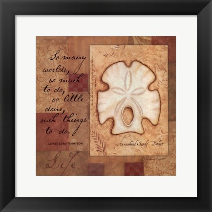 Framed Life - Shell Print