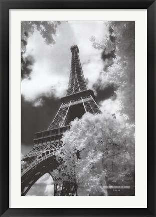 Framed Parc du Champ de Mars, Paris Print