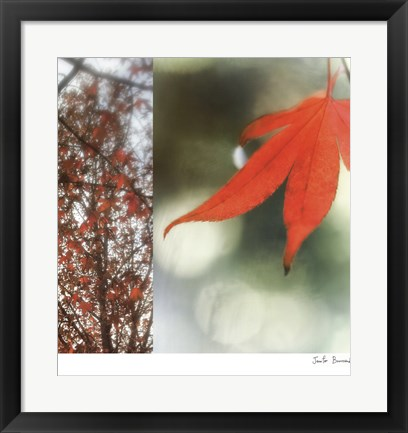 Framed Autumn Leaves I Print
