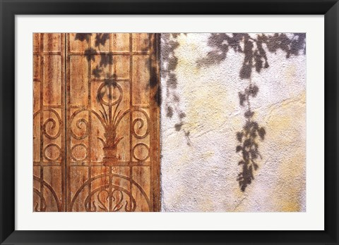 Framed Rusty Door and Grapevine Print