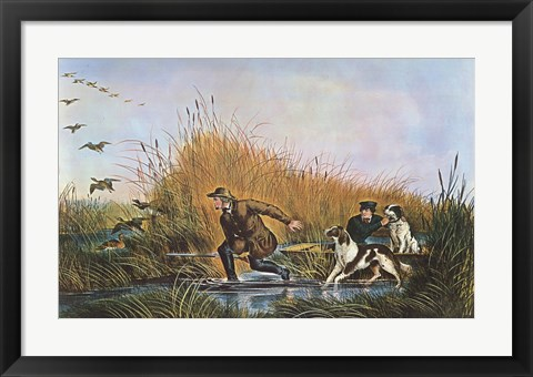 Framed Wild Duck Shooting Print