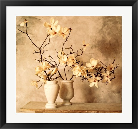 Framed Magnolia Branches Print