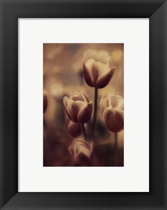 Framed Tinted Tulips III Print