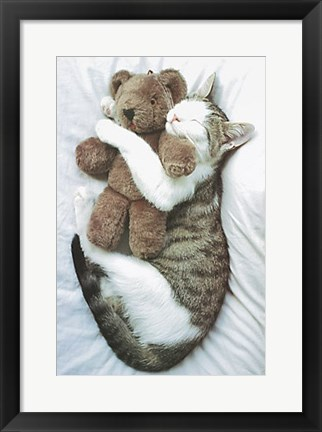 Framed Cat's Pet Print