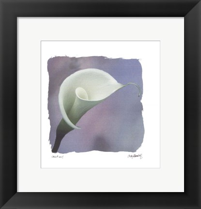 Framed Calla Lily Print