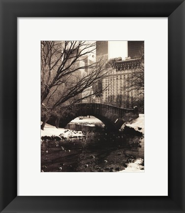 Framed Central Park Bridges IV Print