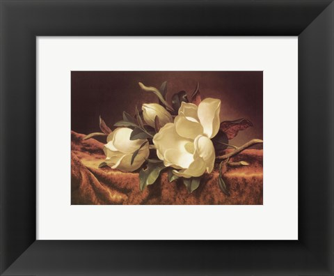 Framed Magnolia On Gold Velvet Cloth Print