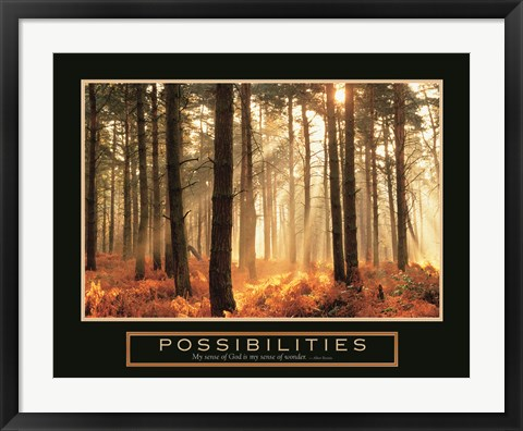 Framed Possibilities-Sunlight Print