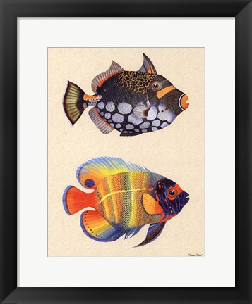 Framed Tropical Fish II Print